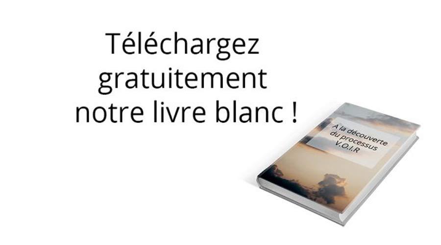 livreblanc900sur500